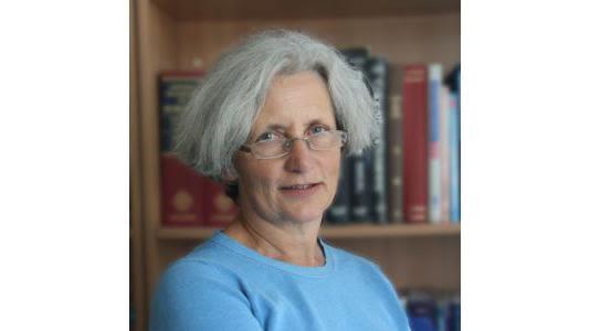 Professor linda hands retires