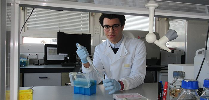 Intern joins the transplantation research immunology group