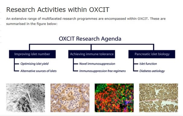 Research activities within oxcit