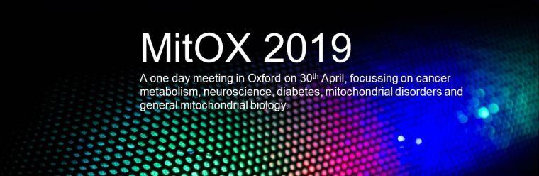 Mitox 2019 1