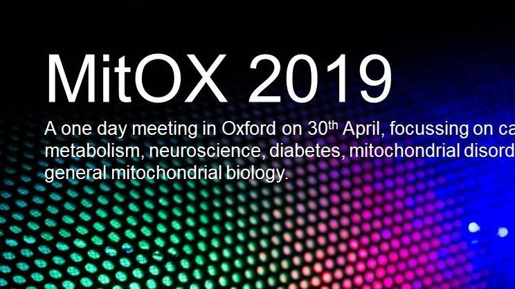 Mitox 2019 30th april
