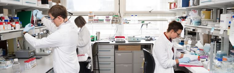 Image shows scientists in the labs undertaking ground-breaking rsearch at the EndoCaRe Centre.