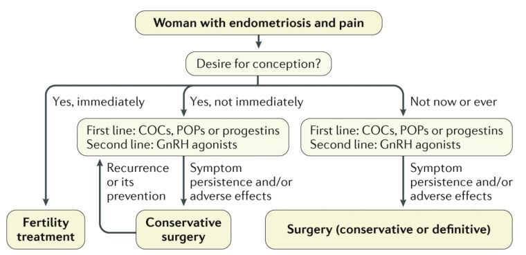 Diagram showing how to manage endometriosis-associated pain.