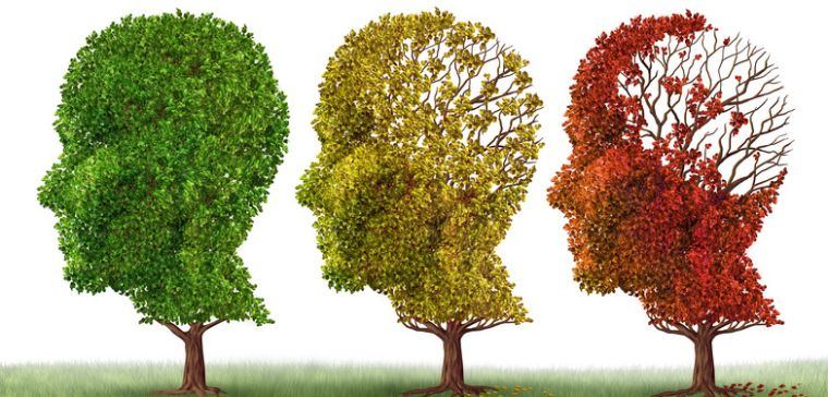 Dementia and other neurodegenerative diseases