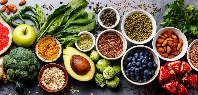 Health In Vegetarians Consortium Cancer Epidemiology Unit Ceu