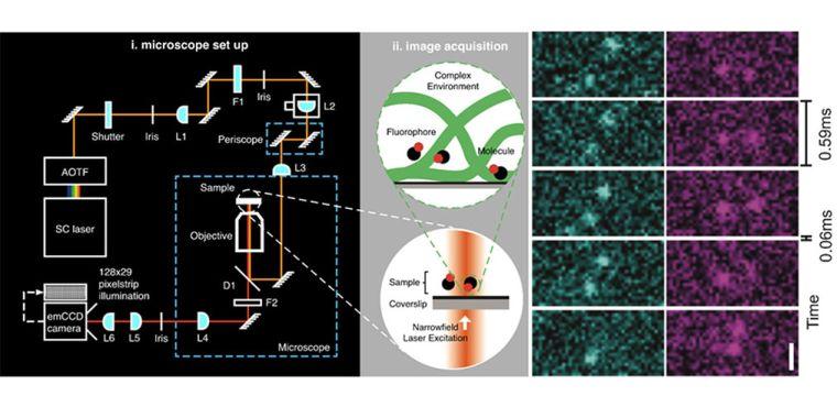 Single molecule imaging 1