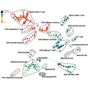 CyTOF Mass Cytometry