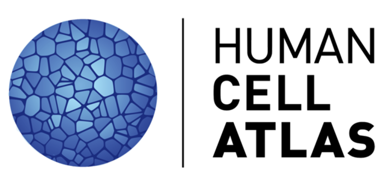 Kennedy institute joins global human cell atlas initiative