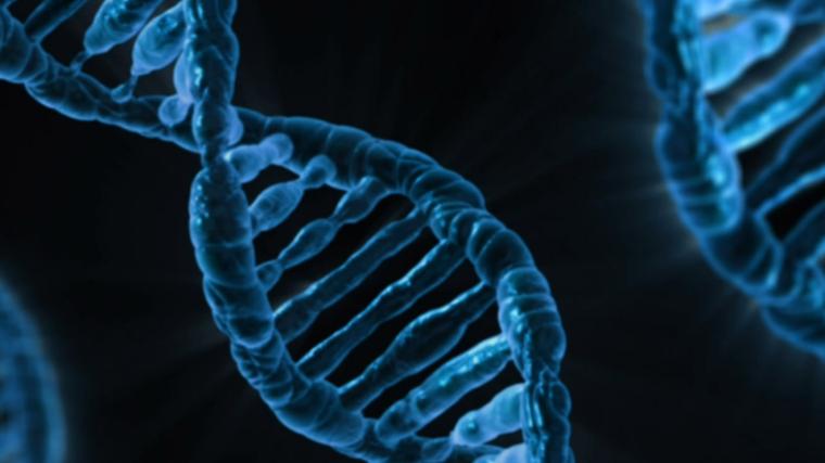 Artist's impression of DNA