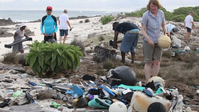Volunteers cleaning up the Aldabra beach. Photo credit: Seychelles Islands Foundation