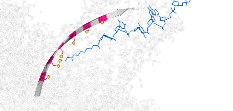 Artist's impression of the molecular hopper