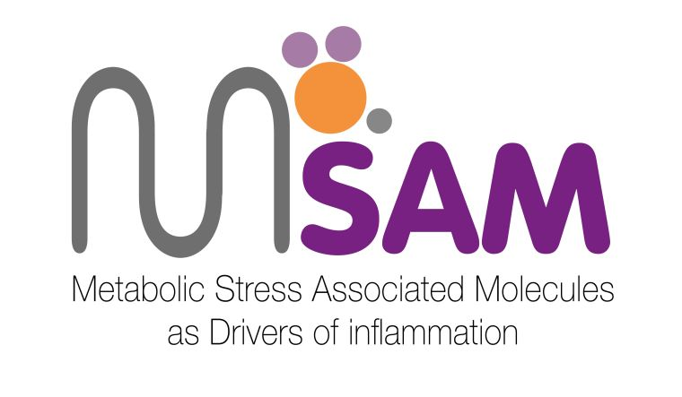 Metabolic Stress Associated Molecules as Drivers of inflammation