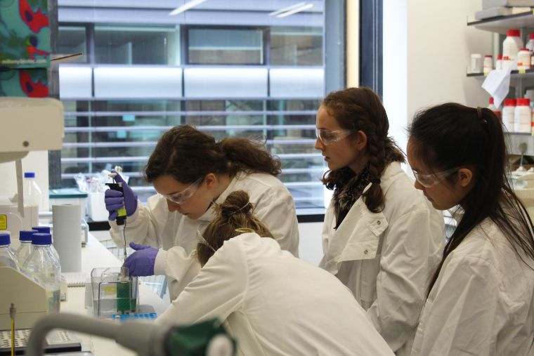 Work experience 2017 girls pipetting