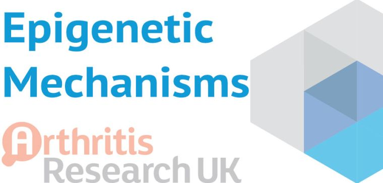 We aim to systematically identify epigenetic mechanisms that underlie and control the complex stem cell and inflammatory environment in bone that leads to destruction of bone tissue in arthritis and other musculoskeletal conditions.