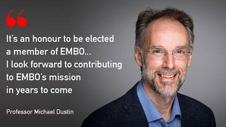 Professor michael dustin elected as embo member