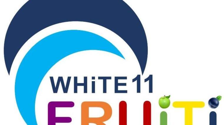 FRUITI logo