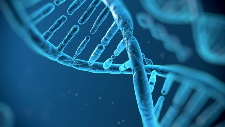 Seven new genetic regions linked to type 2 diabetes