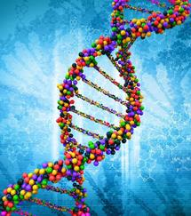 Picture of DNA.