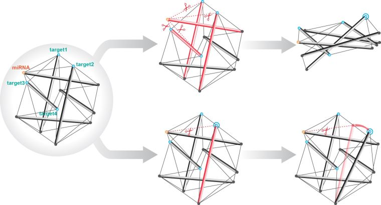 Breaking the link 2013 how robust are gene expression networks
