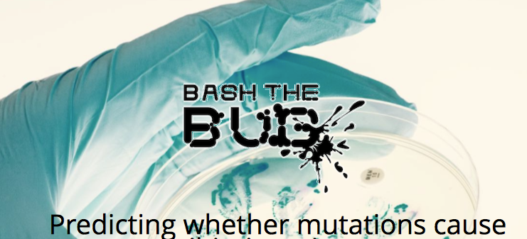 Bash the bug