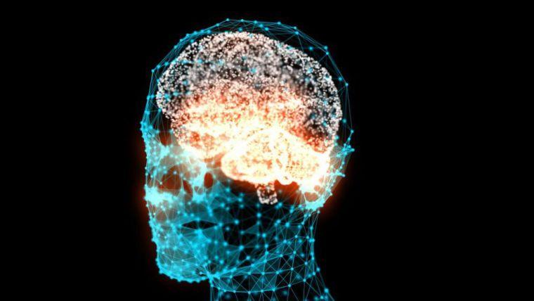 Illustration of head and brain.