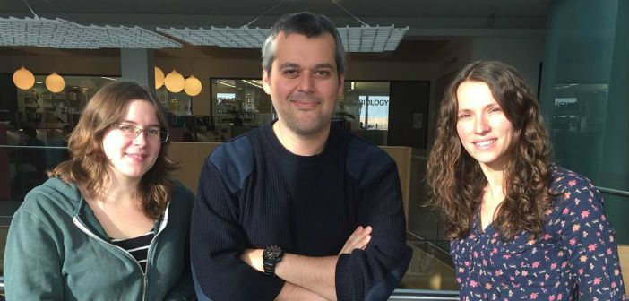 Team effort: Naomi Petela, Thomas Gligoris and Johanna Scheinost from the Nasmyth lab