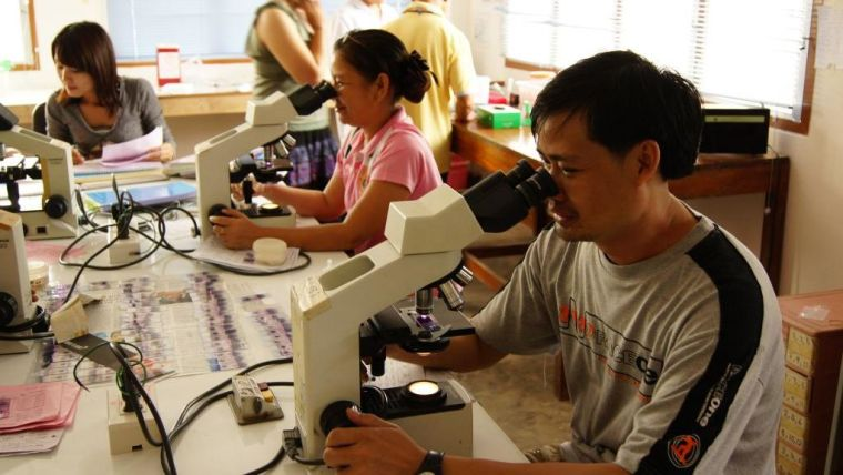 Global malaria control threatened by multidrug resistant strain