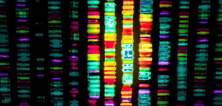 Dna sequencing halts infection2.jpg