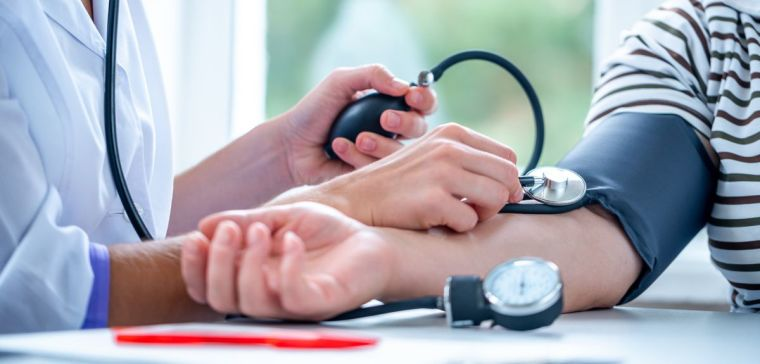 Heart rate and blood pressure changes during pregnancy are less dramatic than previously thought