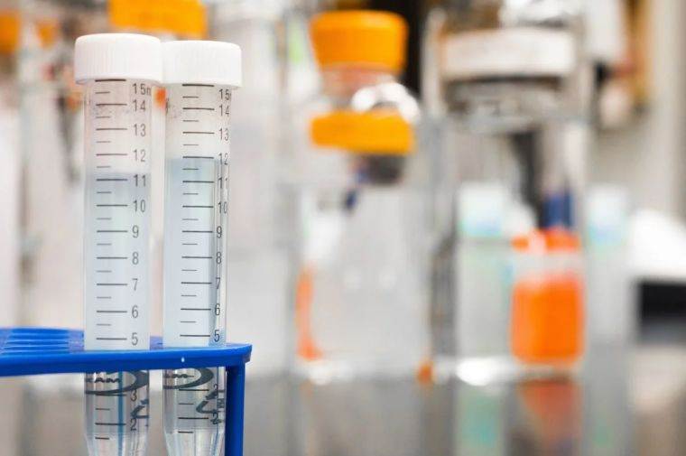 First steps towards treating myotonic dystrophy type 1