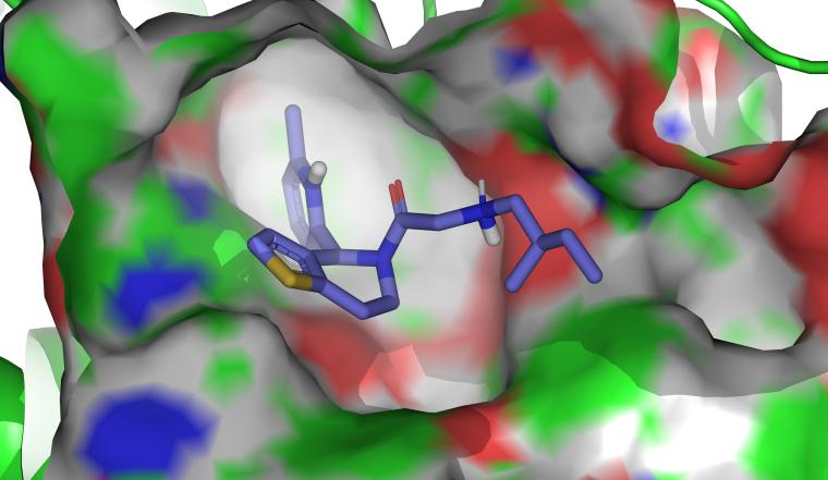 Docking pose of 'RUSKI-201' small-molecule inhibitor