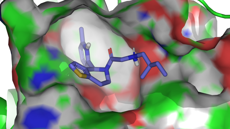 Our group uses synthetic chemistry and biochemistry to develop small-molecule therapeutics and generate new insights into fundamental biology. We are interested in using tool molecules and interdisciplinary methodology to identify and validate new drug targets.