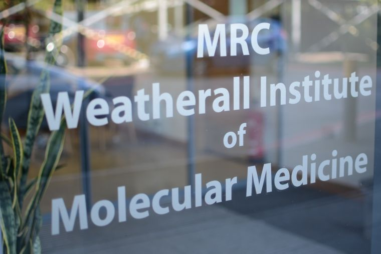 Weatherall Institute of Molecular Medicine