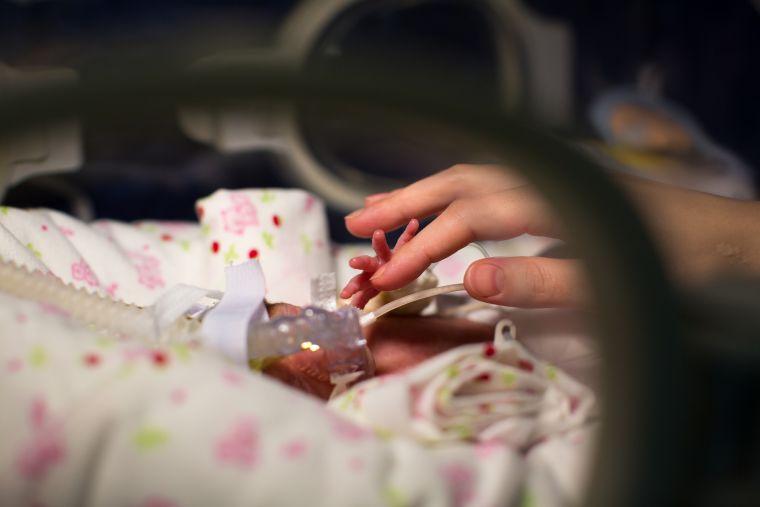 Premature baby hand