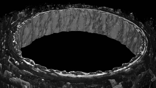 Cell cell contacts in a human coronary arteriole diameter 120um imaged with sem 1