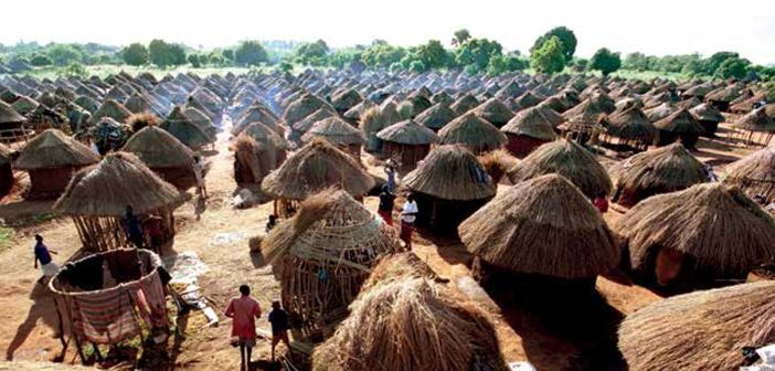 Refugee economies forced displacement and development 1