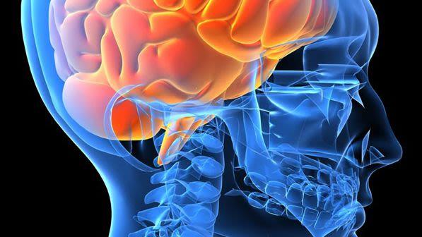 Neuroimaging 1