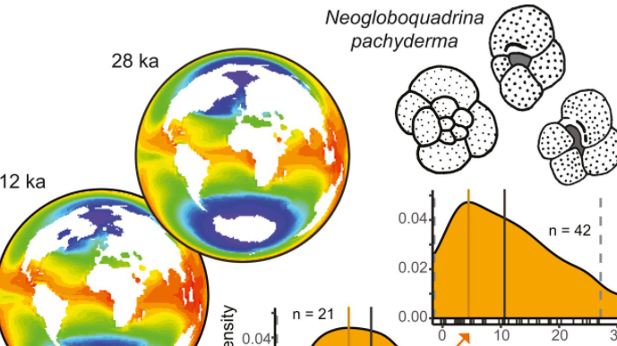 Part of a figure from the research, showing temperature reconstructions with fossil occurrences of planktonic foraminifera