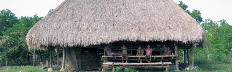 A hut made out of wood with a straw roof and with children sat outside in Indonesia.