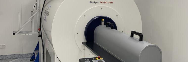 Small Bore MRI