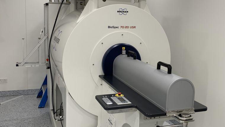 Small animal MRI scanner