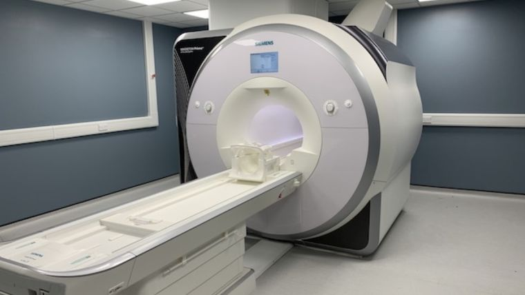 Primate animal MRI scanner