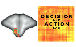 Decisions & Action Lab group image