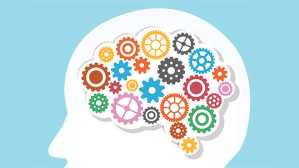 Basic neuroscience