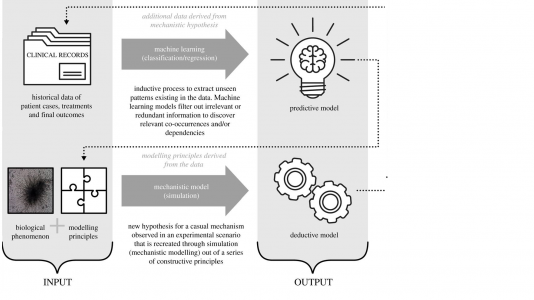 Mechanistic models versus machine learning a fight worth fighting for the biological community