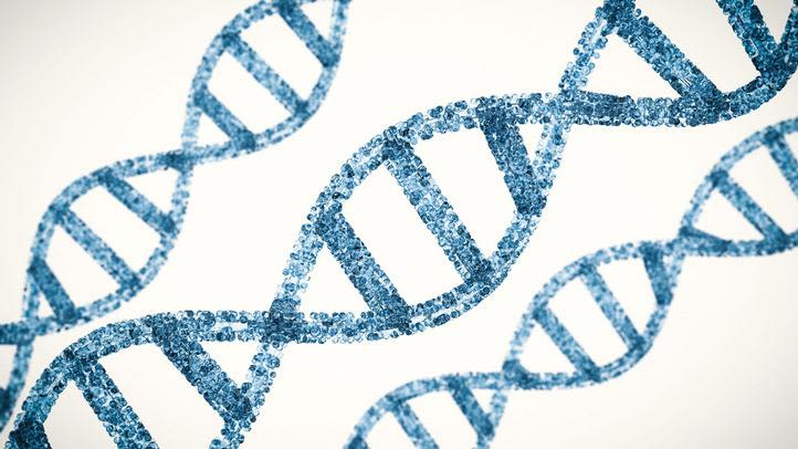 Using dna sequencing and patient data to halt infection outbreak