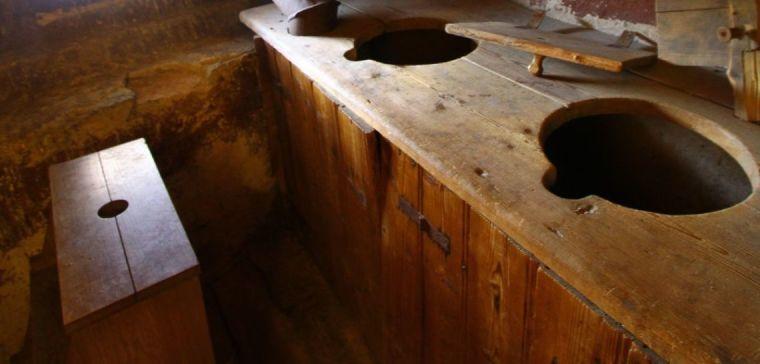 Parasites from medieval latrines unlock secrets of human history
