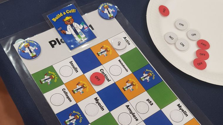 A photo of the build a cell public engagement board game