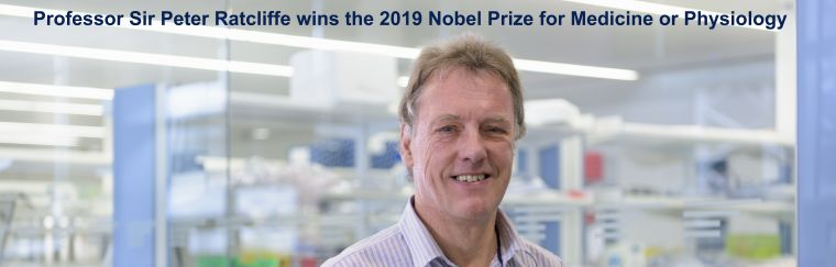 "A headshot profile photo of Professor Sir Peter Ratcliffe with his laboratory in the background with the text ""Sir Peter Ratcliffe wins the 2019 Nobel Prize for Medicine or Physiology"""