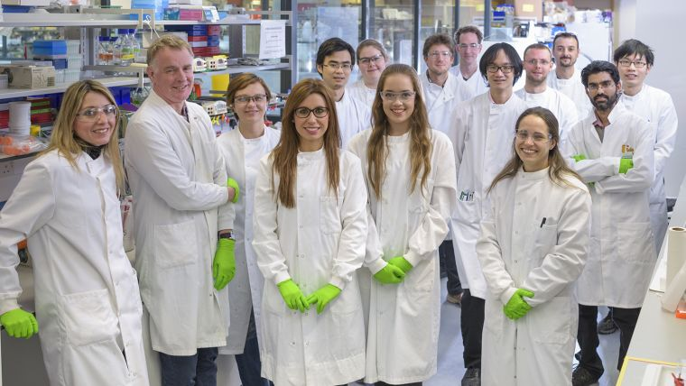 A photo of Colin Goding and his 14 lab members posing for a group photo in the laboratory